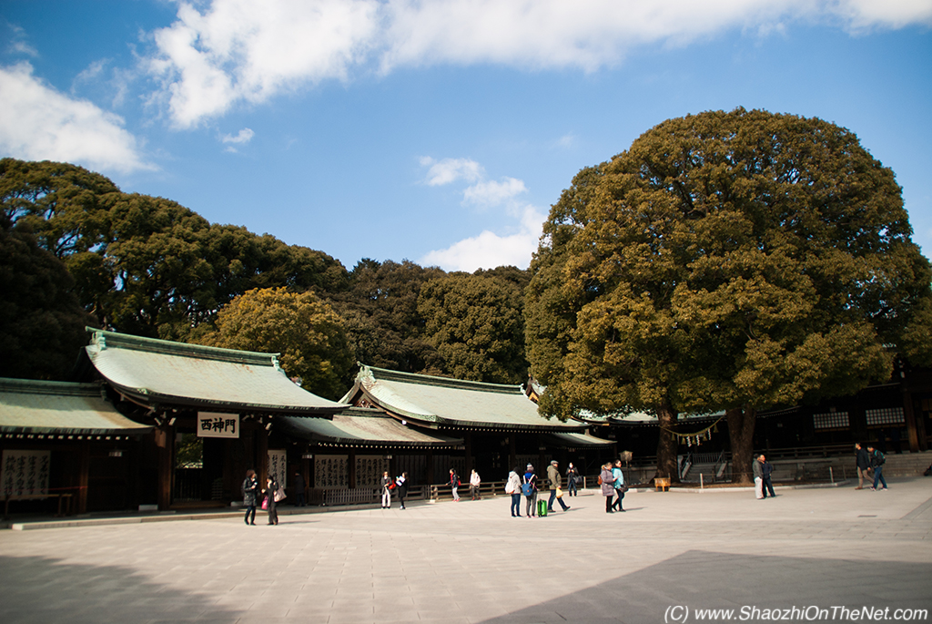 Meiji Shrine – An Oasis in the Middle of Chaos